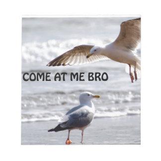 ¡Venido en mí bro! Versión de la gaviota Bloc