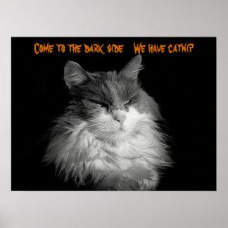 Venidos, tenemos catnip póster