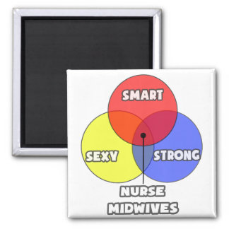 Venn Diagram .. Nurse Midwives 2 Inch Square Magnet
