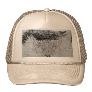 Venn Gee you of flight bengaruwashimimizuku Trucker Hat
