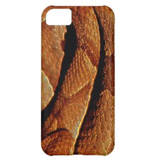 Venomous Reptile Snake Wildlife Phone Case