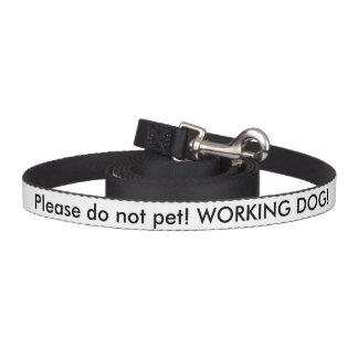 Ventaja del perro del servicio del veterano de los correa de perro
