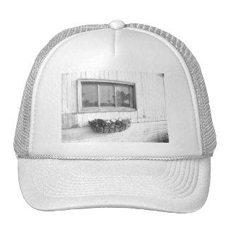 Ventana de la puerta de granero/fotografía blanco  gorro de camionero
