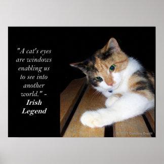 Ventana de los ojos de gatos a otro mundo póster