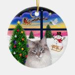 Ventana del navidad - gato de Ragdoll Ornamente De Reyes