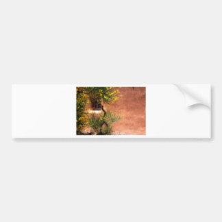 Ventana en el sudoeste etiqueta de parachoque