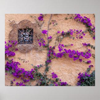 Ventana ornamental con el bougainvillea posters