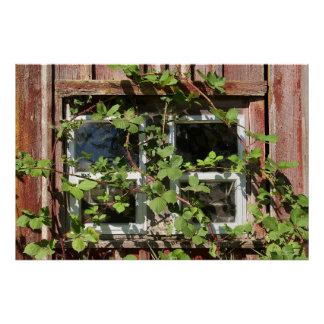 Ventana Overgrown Posters