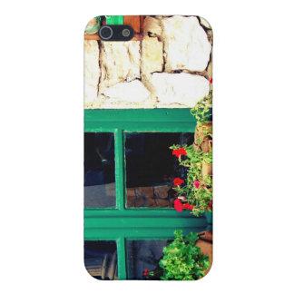 Ventana verde iPhone 5 fundas