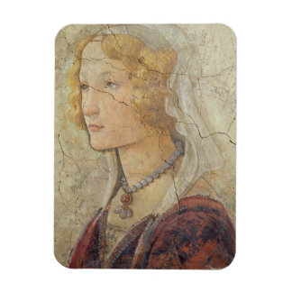 Venus and the Three Graces Offering Gifts to a Gir Rectangle Magnet