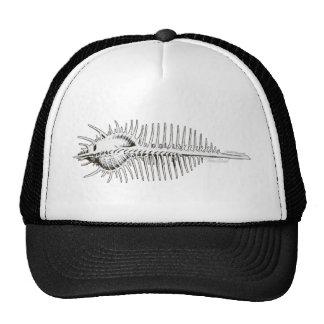 Venus Comb Trucker Hat