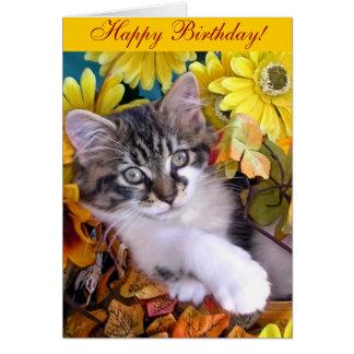 Venus, Cute Maine Coon Kitten Cat, Paws Crossed Card