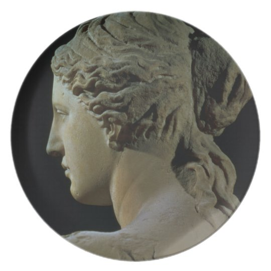 Venus de Milo, detail of the back of the head, Hel Dinner Plate