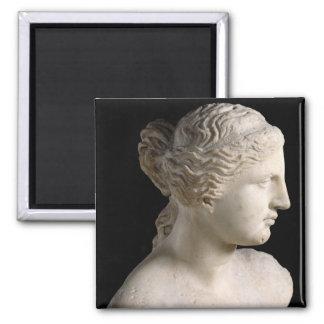 Venus de Milo Fridge Magnet