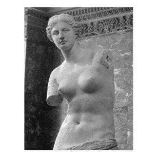Venus de Milo Postcard