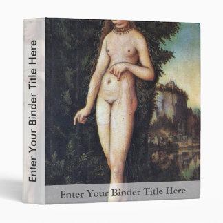 Venus en un paisaje por Cranach D. Ä. Lucas (mejor