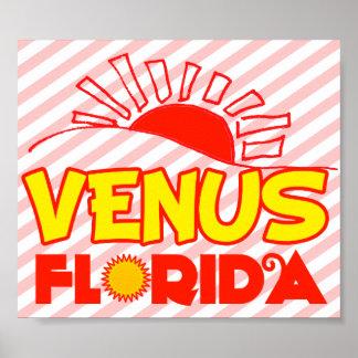 Venus, Florida Poster