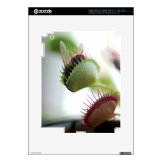 Venus Fly Trap iPad 3 Skin