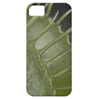 Venus Fly Trap iPhone Cover