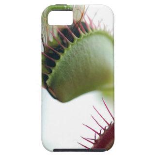 Venus Fly Trap iPhone SE/5/5s Case
