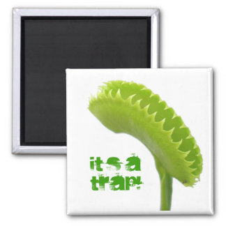 Venus Fly Trap Magnet
