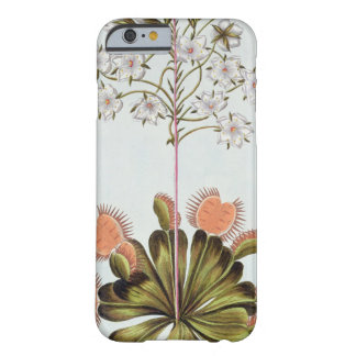 Venus Fly-trap, plate 84, from 'Collection Precieu Barely There iPhone 6 Case