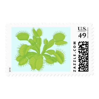 Venus Flytrap Botanical Art Postage Stamp