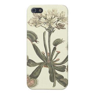 Venus Flytrap Botanical Illustration iPhone SE/5/5s Case