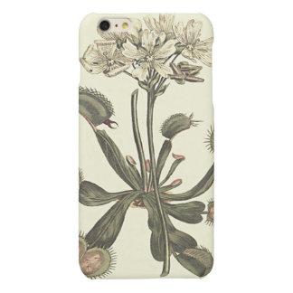 Venus Flytrap Botanical Illustration Matte iPhone 6 Plus Case