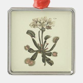 Venus Flytrap Botanical Illustration Metal Ornament