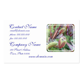 Venus Flytrap Double-Sided Standard Business Cards (Pack Of 100)