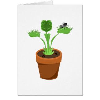Venus Flytrap Greeting Cards