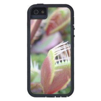 Venus Flytrap iPhone 5 Case