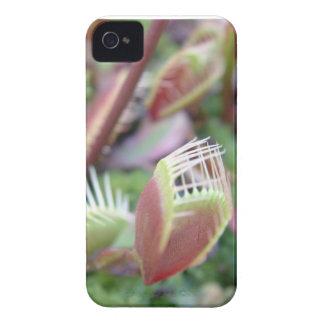 Venus Flytrap Case-Mate iPhone 4 Case