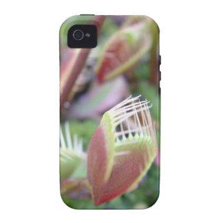 Venus Flytrap Case-Mate iPhone 4 Cases