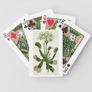 Venus Flytrap Diagram Playing Cards