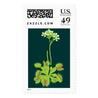 Venus Flytrap Flowers Stamp