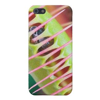 Venus Flytrap iPhone SE/5/5s Cover
