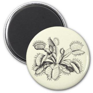 Venus Flytrap Magnet
