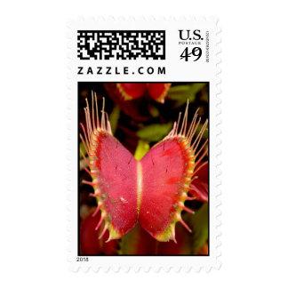 Venus Flytrap Postage Stamps