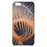Venus Flytrap Sea Anemone Cover For iPhone 5C