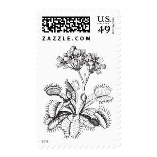 Venus Flytrap Vintage Art Postage Stamp
