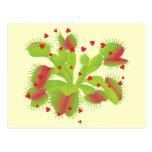 Venus Flytrap with Hearts Postcard