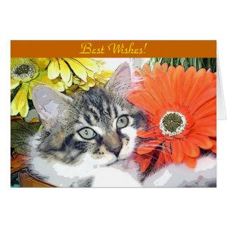 Venus, Funny Kitty Cat Kitten Looking Up, Flowers Card