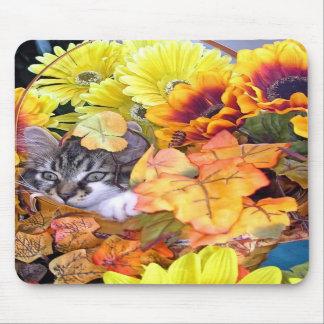 Venus gato lindo del gatito del Coon de Maine co Alfombrillas De Ratones