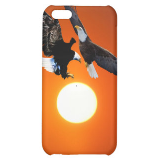 Venus in transit with two eagles iPhone 5C cover