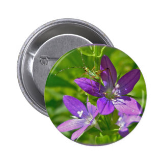 Venus Looking Glass Wildflower Floral Button