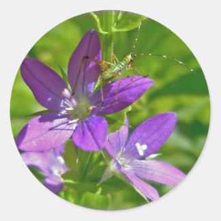 Venus Looking Glass Wildflower Floral Classic Round Sticker