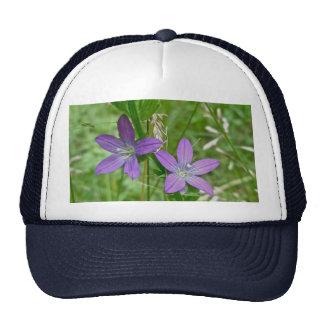 Venus Looking Glass Wildflower Trucker Hat