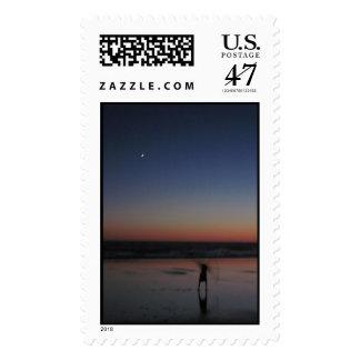 Venus Postage